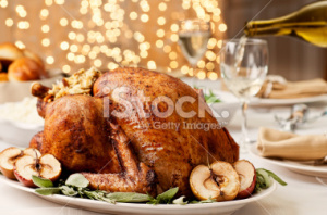 stock-photo-20852964-thanksgiving-turkey